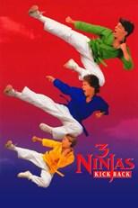 دانلود زیرنویس فارسی 3 Ninjas Kick Back                          1994