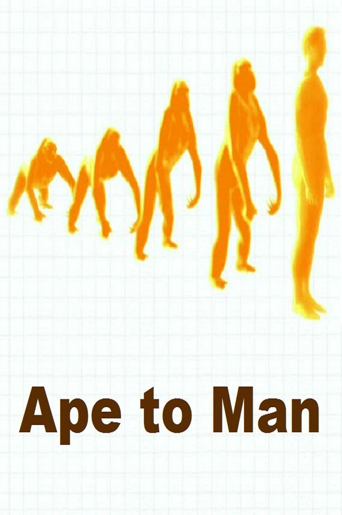 from man to ape Ape quotes from brainyquote, an extensive collection of quotations by famous   man, as we know him, is a poor creature he is halfway between an ape and a.