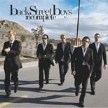 دانلود زیرنویس فارسی Backstreet Boys - Incomplete                          2005