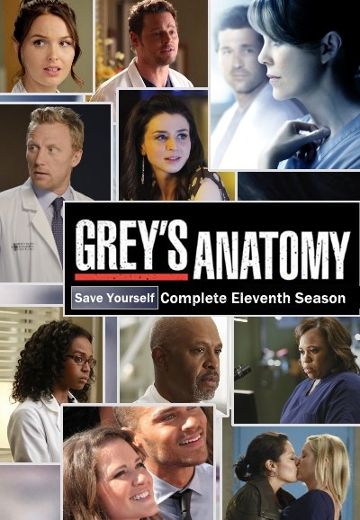 Grey's Anatomy – Saison 11