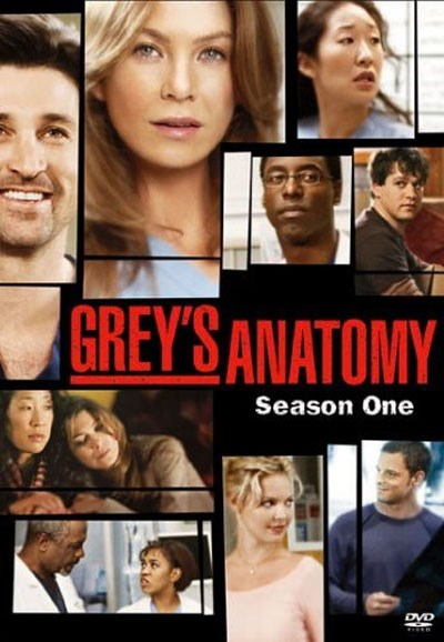 Subscene Greys Anatomy First Season English Subtitle