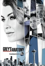 Grey's Anatomy - Fourteenth Season