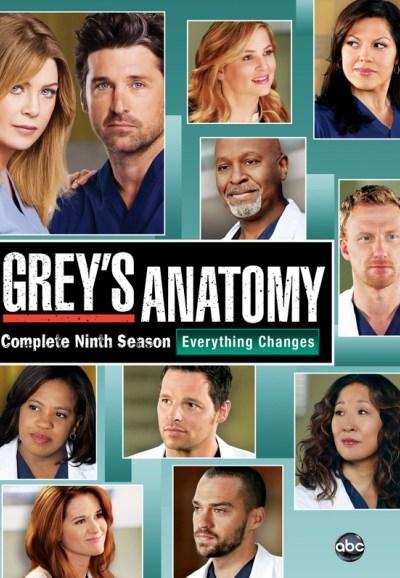 Subscene Greys Anatomy Ninth Season English Subtitle