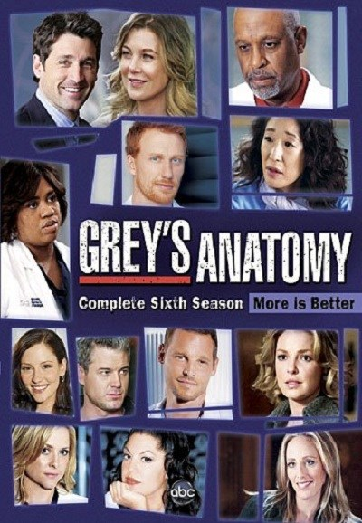 Subscene Greys Anatomy Sixth Season English Subtitle