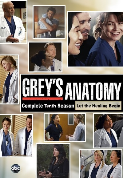 Subscene Greys Anatomy Tenth Season Arabic Subtitle