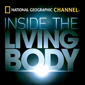 Subscene - Subtitles for Inside The Living Body