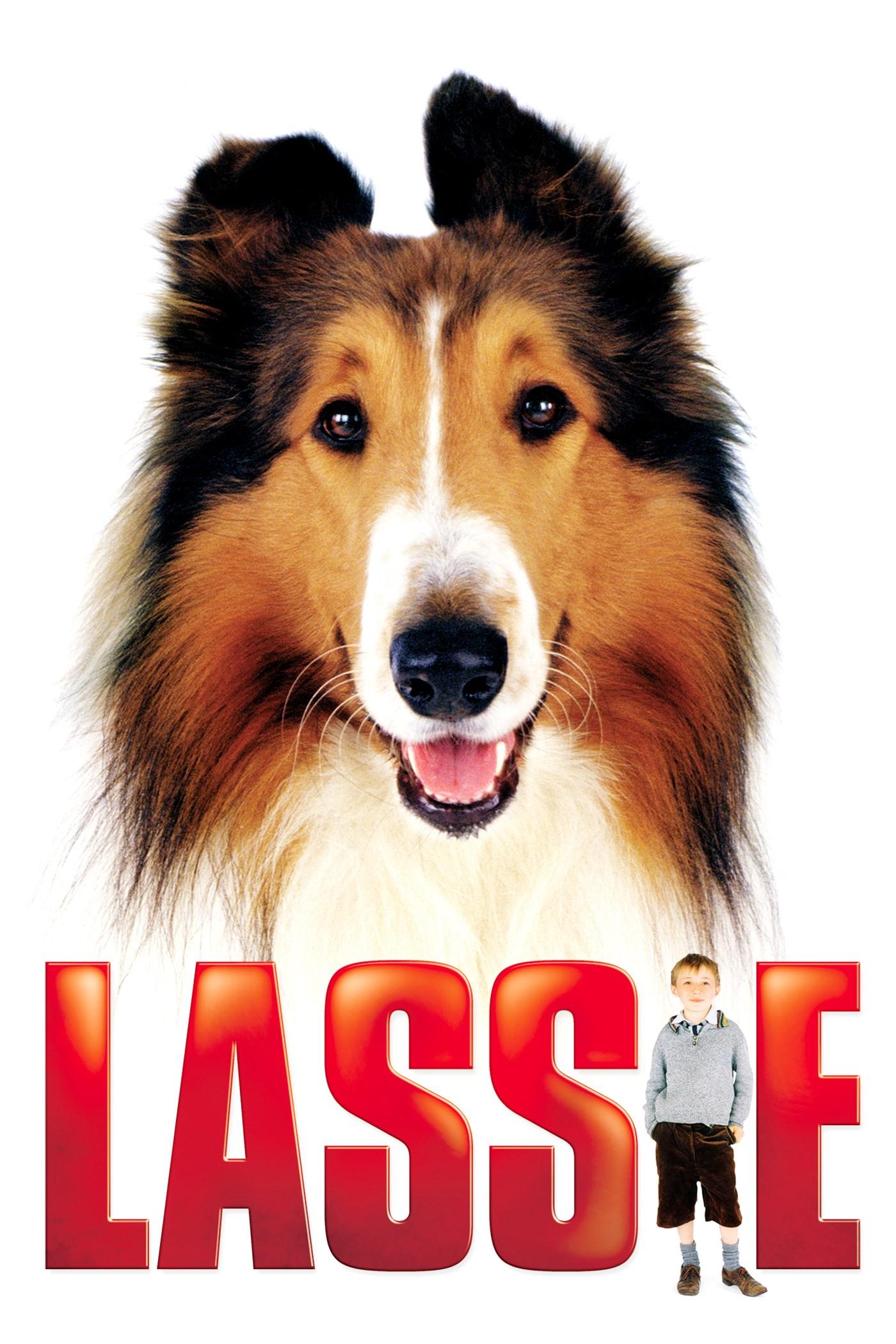 Subscene - Lassie Arabic hearing impaired subtitle