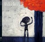 Steven Wilson - Drive Home (2013)