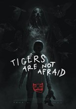 tigers-are-not-afraid