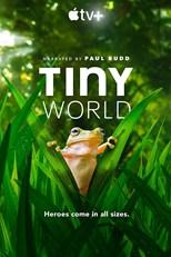 tiny-world-second-season