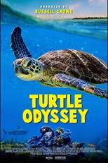 turtle-odyssey