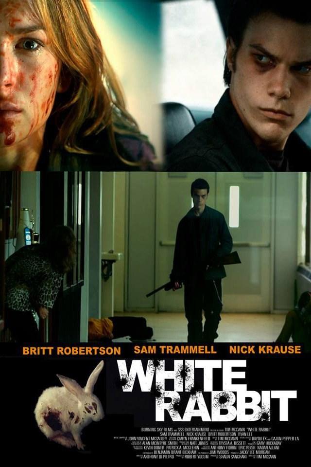 White Rabbit 2013